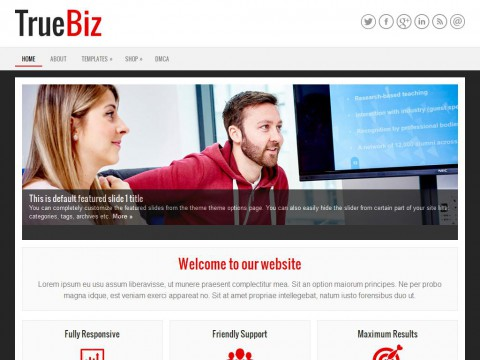 TrueBiz WordPress Theme