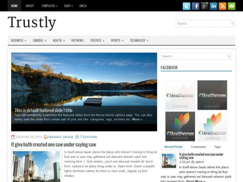 Trustly WordPress Theme