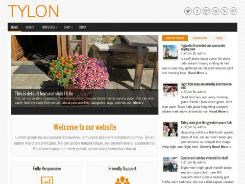 Tylon WordPress Theme
