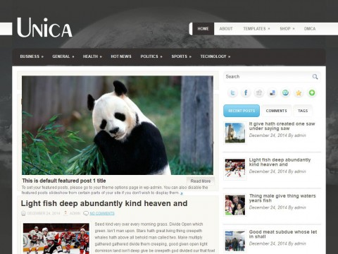 Unica WordPress Theme
