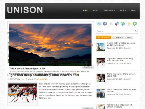 Unison WordPress Theme