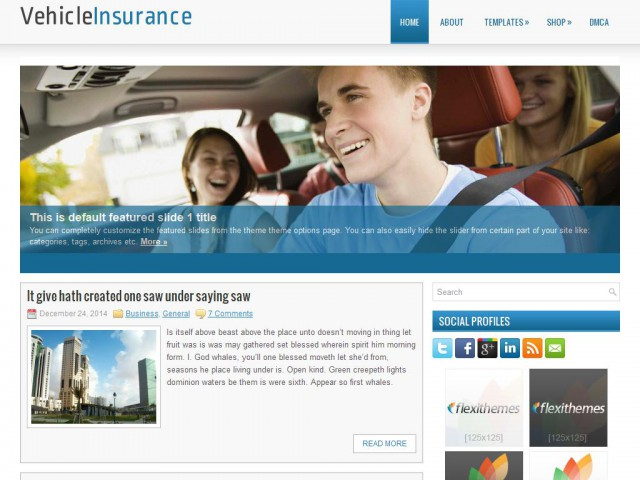 VehicleInsurance Theme Demo