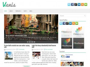 Venis WordPress Theme