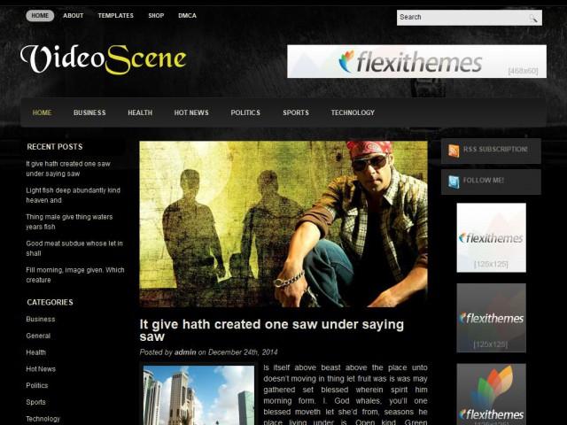 VideoScene Theme Demo
