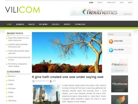 Vilicom WordPress Theme