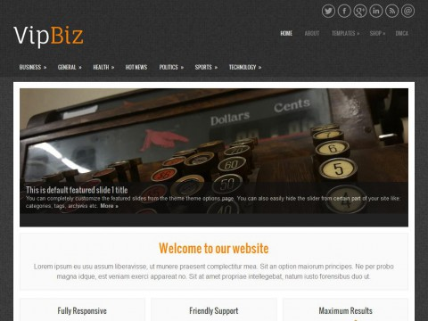 VipBiz WordPress Theme