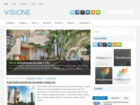 Visione WordPress Theme
