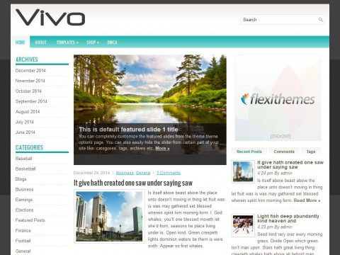 Permanent Link to Vivo