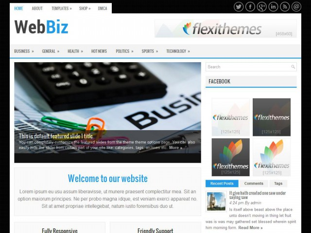 WebBiz Theme Demo
