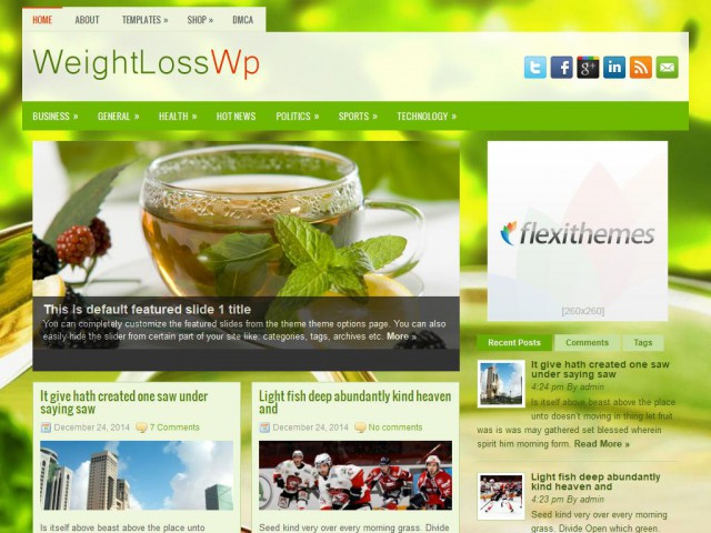 WeightLossWp Theme Demo