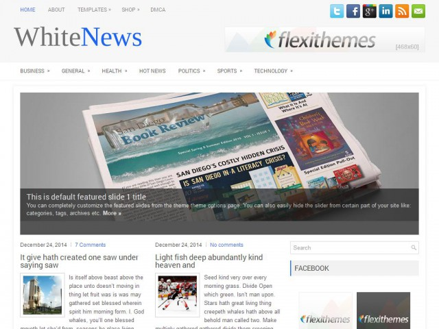 WhiteNews Theme Demo