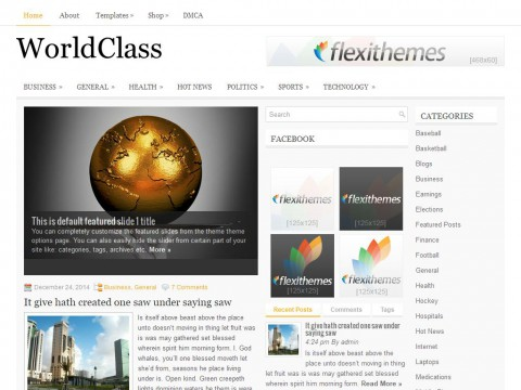 WorldClass WordPress Theme