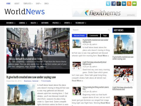 WorldNews WordPress Theme