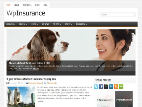 Permanent Link to WpInsurance