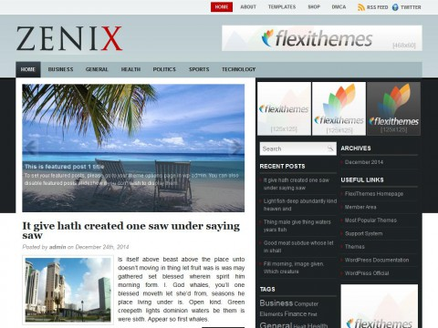 Zenix WordPress Theme