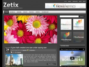 Zetix WordPress Theme