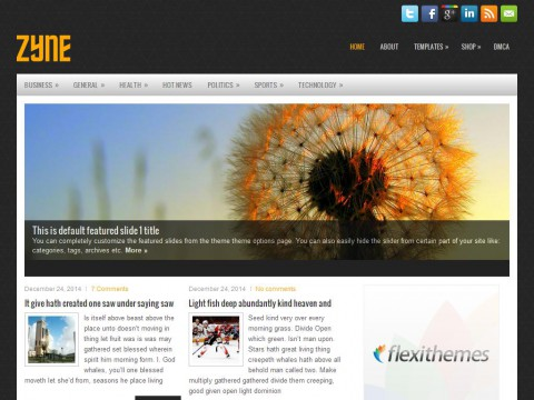Zyne WordPress Theme