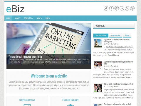 eBiz WordPress Theme