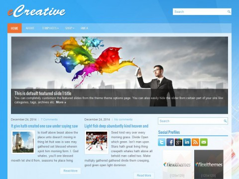 eCreative WordPress Theme