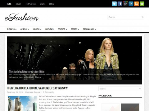 eFashion WordPress Theme