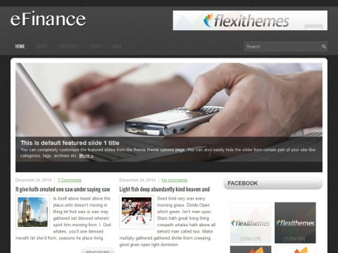 eFinance WordPress Theme