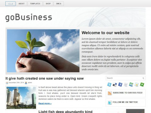 goBusiness WordPress Theme