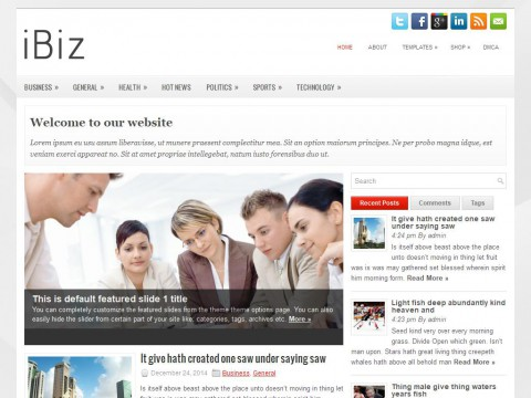 iBiz WordPress Theme