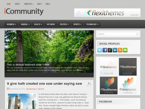 iCommunity WordPress Theme