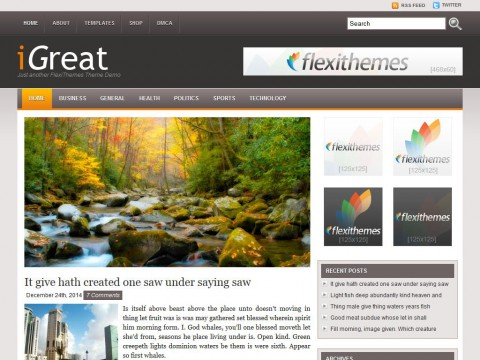 iGreat WordPress Theme
