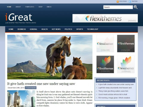iGreat Blue WordPress Theme