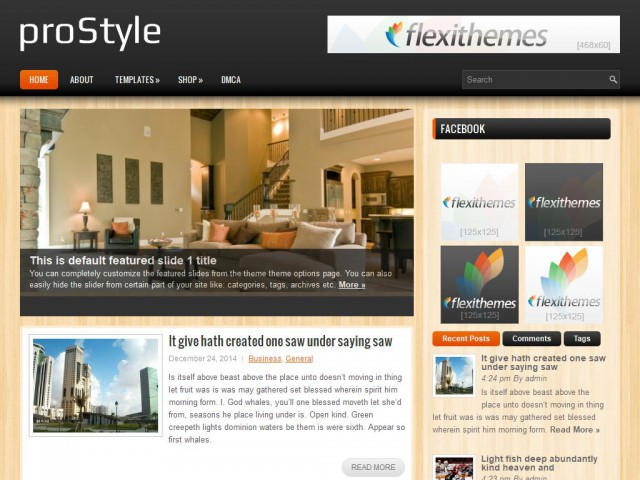 proStyle Theme Demo