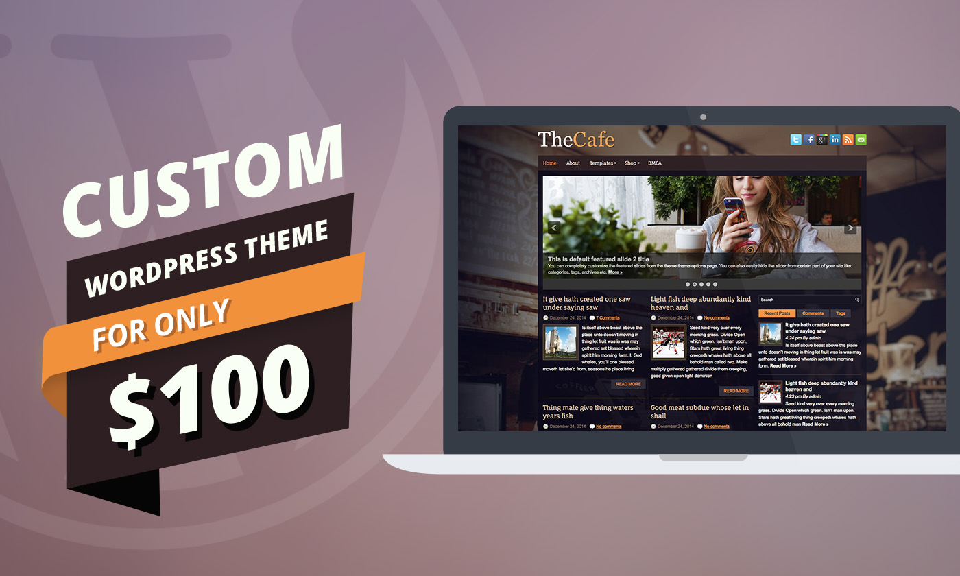 Purchase a Custom WordPress Theme for only $100