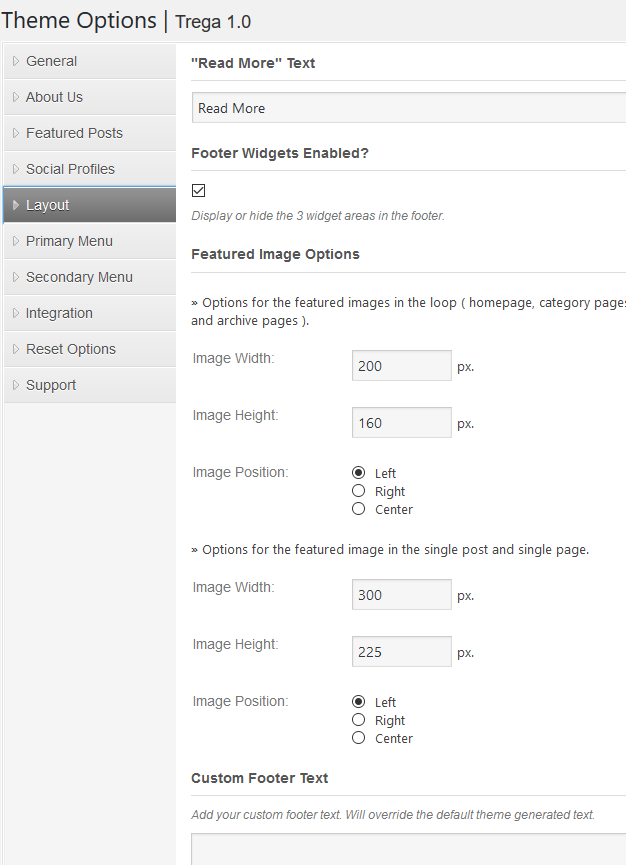 Layout Settings of a WordPress Theme