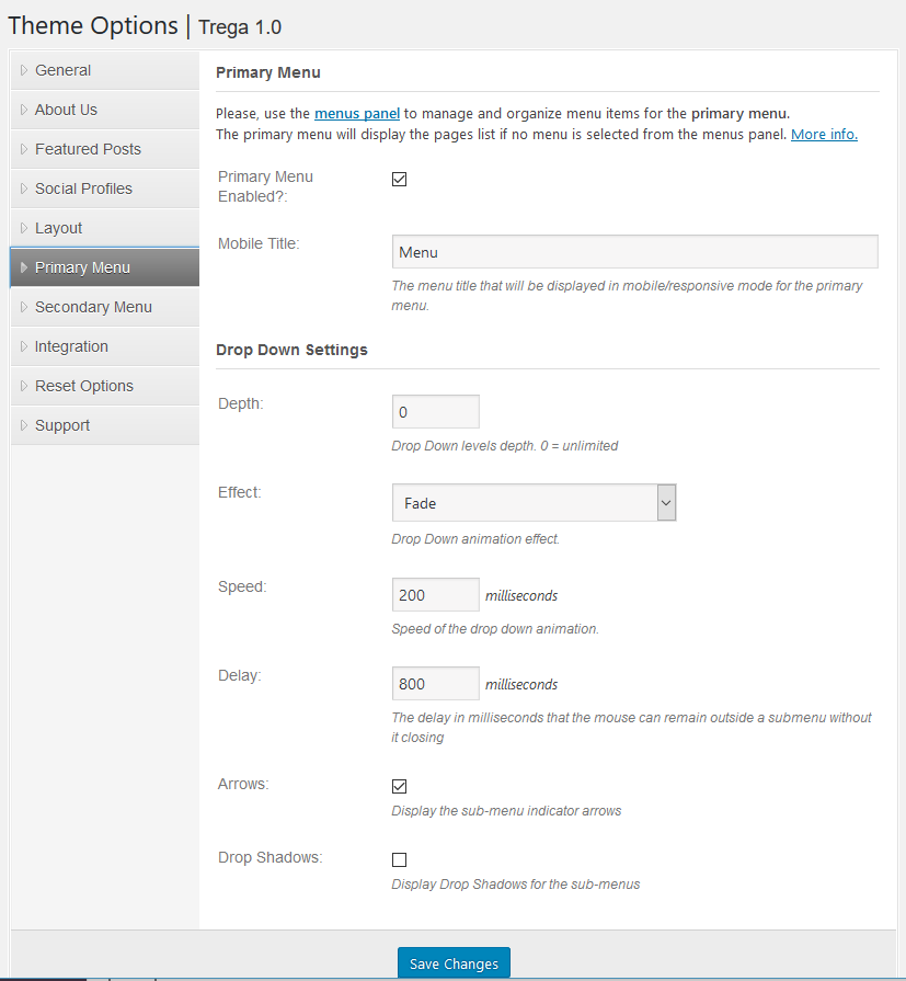 Main Menu settings for the WordPress Theme